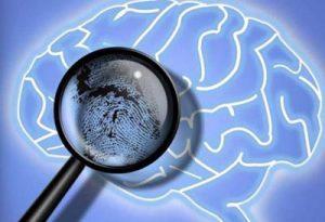 Lupa sobre una representación digital de un cerebro.