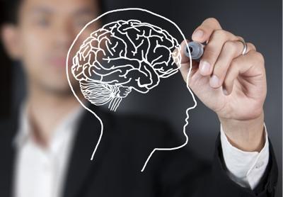 Perito psiquiatra dibuja un cerebro humano